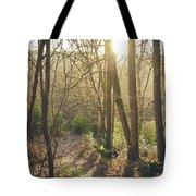 Sunset Lights Tote Bag