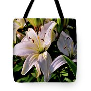 Sunset Lilies Tote Bag