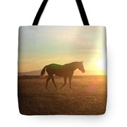 Sunset Mare Tote Bag