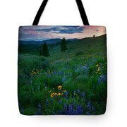Sunset Meadow Trail Tote Bag