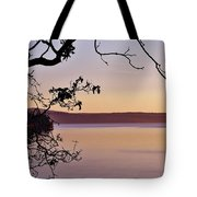 Sunset On Orcas Tote Bag