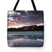 Sunset On South Forest Tote Bag