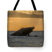 Sunset On The Wreck Of The Concrete Ship Atlantus Tote Bag