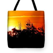 Sunset Over Hatteras Maritime Forest Tote Bag