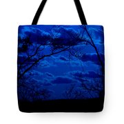 sunset over Suwanee 2009 Tote Bag