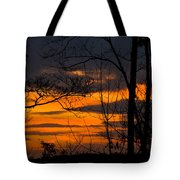 sunset over Suwanee 2010 Tote Bag