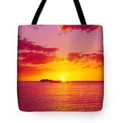 Sunset Over The, Atlantic Ocean, Cat Tote Bag