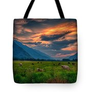 Sunset Over The Pasture Tote Bag