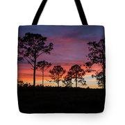 Sunset Pines Tote Bag