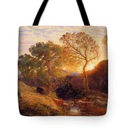 Sunset Tote Bag by Samuel Palmer