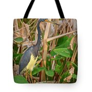 Sunset Search Tote Bag