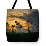 Sunset Silhouettes In June Tote Bag