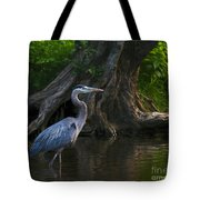 Sunset Stroll By James Figielski Tote Bag