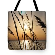 Sunset Through The Dune Grass Tote Bag
