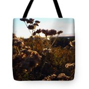 Sunset Through The Flowers Tote Bag