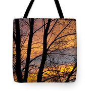 Sunset Through The Tree Silhouette Tote Bag