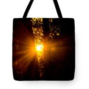 Sun Bursting Through The Trees, Chiloquin Oregon Tote Bag