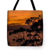 Sunset /torrey Pines Image 2 Tote Bag