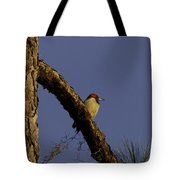 Sunset Tranquility Tote Bag