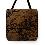 Sunset Winter Tote Bag