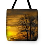 Sunset With Backlit Trees Tote Bag