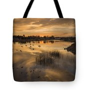 Sunset With Pigeons Tote Bag