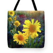 Sunsets And Sunflowers Of Buena Vista 2 Tote Bag
