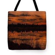 Sunsettia Gloria Catus 1 No. 1 L B. Tote Bag
