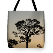Sunsetting Thru The Trees Tote Bag
