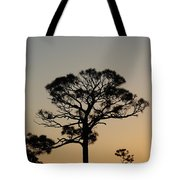 Sunsetting Trees Tote Bag
