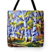 Sunshine And Birches Tote Bag
