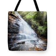 Sunshine At The Waterfall Tote Bag