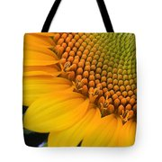 Sunshine In A Flower Tote Bag