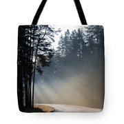 Sunshine In November Tote Bag