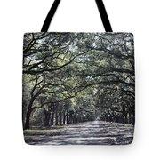 Sunshine On Live Oaks Tote Bag