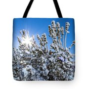 Sunshine Through Snow Covered Tree Tote Bag
