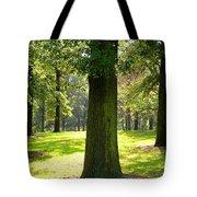 Sunshine Trees Forest Park Tote Bag