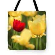 Sunsoaked Tulips #5 Tote Bag