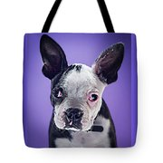 Super Pets Series 1 - Bugsy Close Up Tote Bag