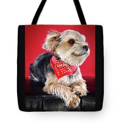 Super Pets Series 1 - Super Moose Chilling Tote Bag