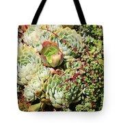 Super Succulents Tote Bag
