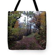Superior Hiking Trail Tote Bag