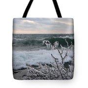 Superior January Waves Tote Bag