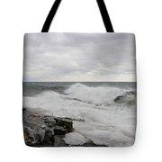 Superior Wild Waves Tote Bag