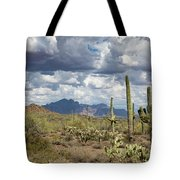 Superstition Shadows Tote Bag