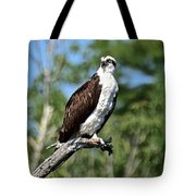 Supervisor Of Security Tote Bag