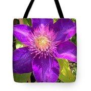 Supreme Violet Tote Bag