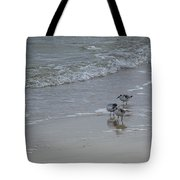 Surf And Birds Tote Bag
