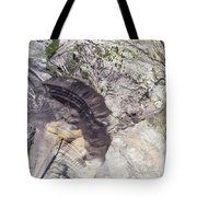 Surface Coal Mining In Poland. Destroyed Land. View From Above.  Tote Bag