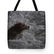 Surfer Dog 1 Tote Bag